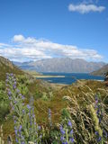 Lake Hawea, New Zealand Stock Photo