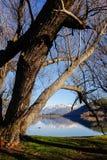Lake Hayes, New Zealand Royalty Free Stock Photo