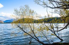 Lake Hayes in New Zealand. Lake Hayes located in the Wakatipu Basin in Central Otago,South Island in New Zealand Stock Image