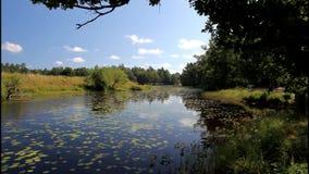 Lake Helgasjon in Sweden stock footage