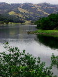 Lake Hennessey in winter. Lake scene on foggy winter morning in Napa Valley Royalty Free Stock Image