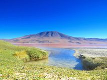 Lake at the highlands of Bolivia. This amazing lake you can find in the higland of Bolivia. The water is crystal clear,not a lot of vegetation on the mountain Royalty Free Stock Image
