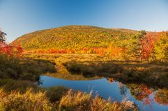 A lake among the hills with bright colorful autumn trees. Sunny day. Acadia National Park. USA. Maine. royalty free stock photography