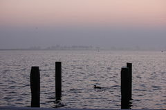 Lake in Holland. A lake in Holland with jetty poles in the water Stock Images