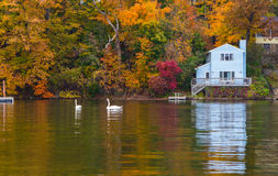 Lake Hopatcong fall foliage Royalty Free Stock Images
