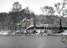 Lake house. Forest. Bare branches of trees. First snow. Dark leaden water. Dry grass. Grey sky Royalty Free Stock Images