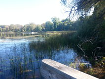 Lake Huron Arkivbild