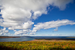Lake Huron at Cape Croker Autumn Fall Forest Trees landscape Royalty Free Stock Photos