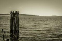 Lake Huron nyckel till den Mackinaw ön fotografering för bildbyråer