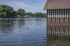 The lake in the Hyde Park, London. Stock Image