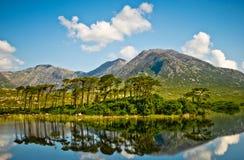Lake i Connemara, Irland Fotografering för Bildbyråer
