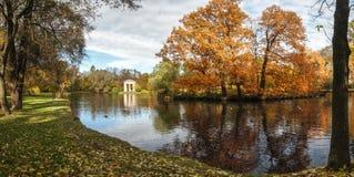 Lake i höstpark Arkivfoto