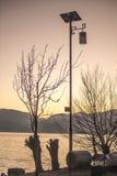Lake i morgonen Arkivfoton