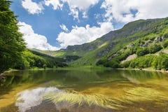 Lake i oklarheterna Arkivbild