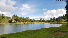 Lake i skogen Royaltyfria Foton