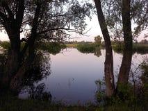 Lake i sommar Arkivfoton
