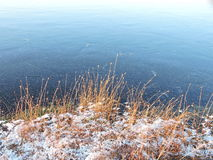 Lake in ice and plants Royalty Free Stock Photography