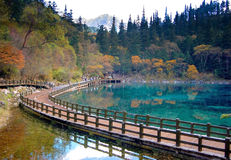 Lake In Autumn Royalty Free Stock Photos