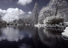 Lake infrared. A lake shot in infrared light Stock Photos