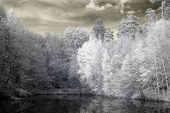 Lake in infrared Stock Photography