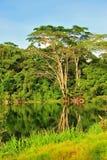 Lake on an island Stock Image