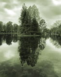 Lake Island with Trees Royalty Free Stock Image