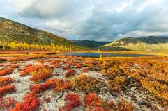 Autumn on Jack London`s lake. stock photography