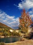 lake jesiennej malowniczy Fotografia Stock