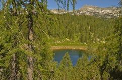 Lake in Julian Alps Stock Image