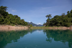 Lake in the jungle. Mountain lake surrounded by jungle royalty free stock images