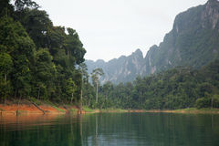 Lake in the jungle. Mountain lake surrounded by jungle royalty free stock photos