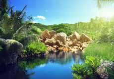 Lake in jungle of Seychelles Stock Image
