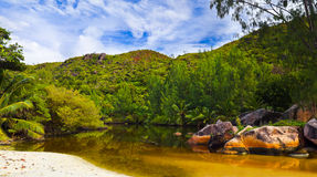 Lake in jungles at Seychelles Stock Image