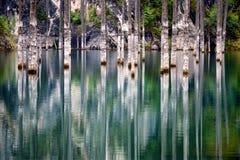 Lake Kaindy in the Kazakhstan. Dead trees in Lake Kaindy, Tien-Shan mountains, Kazakhstan, Central Asia Royalty Free Stock Photography