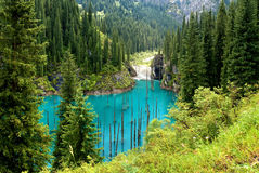 Lake Kaindy in Tien-Shan mountains Royalty Free Stock Images