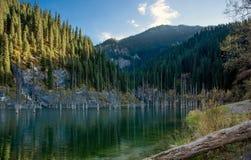 Lake Kaindy. Stock Photo
