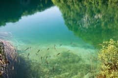 Lake Kaluderovac Royalty Free Stock Photos