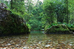 Lake in Kamninska Bistrica Slovenia royalty free stock photography