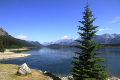 Lake in Kananaskis Country - Alberta - Canada Royalty Free Stock Photo