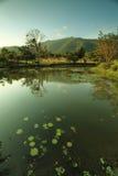 Lake at Kao Yai - Thialand Stock Photo