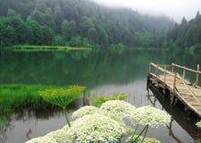 Lake Karagöl. Lake Karagol Borçka Artvin Turkey Royalty Free Stock Photography
