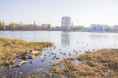 Lake Karasun in Krasnodar Royalty Free Stock Image