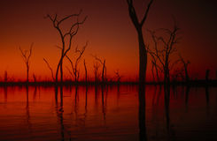 Lake Kariba sunset, Zimbabwe Royalty Free Stock Photos