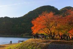 Lake Kawaguchi Stock Image