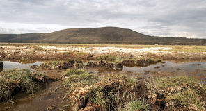 Lake of kenia Royalty Free Stock Photography