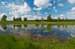 Lake Kenozero . Arkhangelsk region, Russia royalty free stock images
