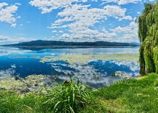 Lake Kerkini. premier birding. Site in Greece stock images