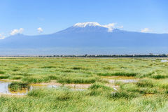 Lake with Kilimanjaro Mount in the background, Kenya Royalty Free Stock Photos