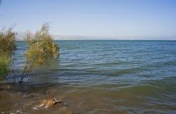 On the Lake. Kinneret Lake in summer. Israel Stock Photo