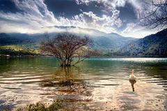 Lake Kourna Royalty Free Stock Image